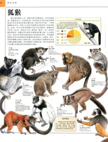 《学生探索动物百科》