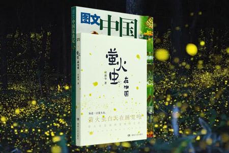 团购:中国昆虫记2册