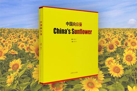 中国向日葵
