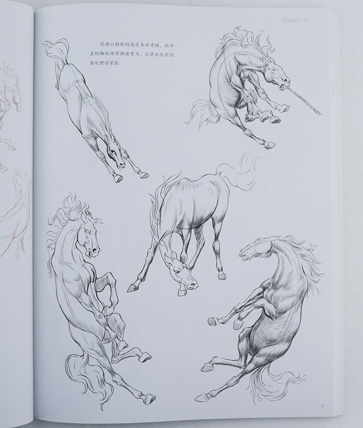 动物作为绘画题材的历史非常久远,它们的身姿优美,充满力量,十分适合作为素描、速写和手绘作品中的主角。这些动作灵敏,形态多样,但内在又有着一些共通的特点的美丽形体,应该如何用画笔去表现?就让这本书来告诉你吧。 《完美手绘课堂:动物画表现技法》以动物手绘表现技法为主题,对各种动物的外在形态、内在结构和夸张要点都进行了详细的讲解与绘画示范。书中内容分为六个章节:初章讲述动物画初步技法,主要是一些基础的动物结构和骨骼常识、形体的概括以及线的运用等基础知识;第二到五章详细讲解马科、鹿科、猫科(包括狮子、老虎和家猫等
