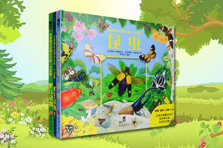 (精)乐乐趣童书·多维阅读动物小百科:水生动物+昆虫+爬行动物(全彩版)(共3册)