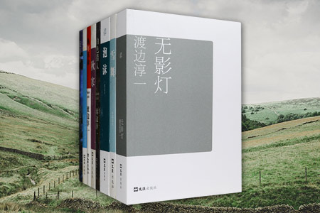 团购:渡边淳一自选集·无影灯等8册