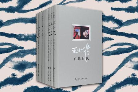 (精)王小波经典作品集(套装共7册)