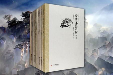 团购:中国民族经济村庄调查丛书10册