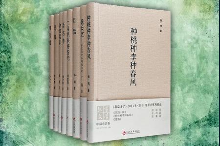团购:<北京文学>2013-2014重点优秀作品8册