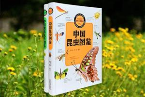 团购:中国之美自然生态图鉴:观赏花卉+昆虫