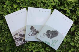 汪曾祺-流年忆昔+四方食事+草木春秋(精华典藏本)