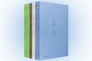 团购:王安忆中篇小说系列6册
