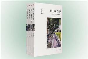团购:王安忆短篇小说系列4册