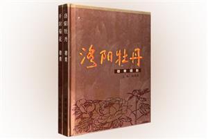 团购:(精)穆青摄影2册