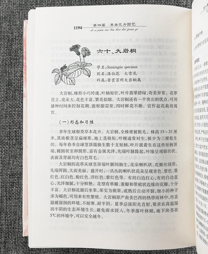 《花卉园艺手册》