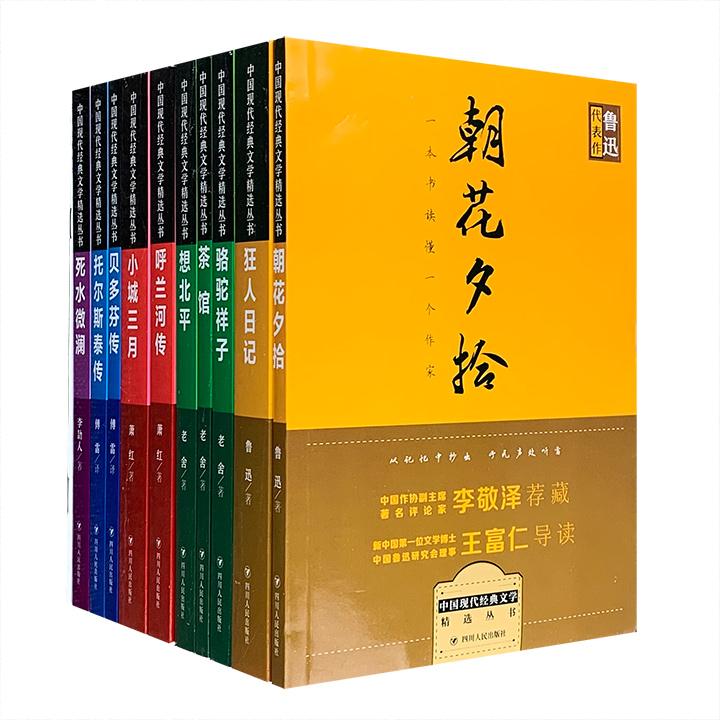 中国现代经典文学精选丛书(全10册)