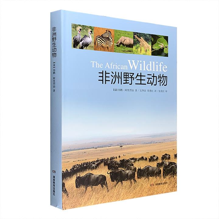 大型摄影画集《非洲野生动物》,大16开精装,铜版纸全彩图文,数百幅精美的高清照片,搭配简约的文字,展示了形形色色的非洲野生动物,包括70多种哺乳动物、60多种鸟类、少量两栖类、爬行类动物和昆虫,以及12处非洲著名的自然景观,范围横跨肯尼亚、坦桑尼亚、津巴布韦、南非、马达加斯加等非洲7国。定价138元,现团购价48元包邮!