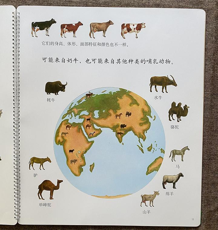 《儿童科普启蒙胶片书第一次发明(全5册)》